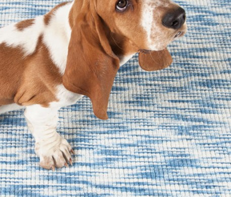 Understanding Area Rugs: Materials and Construction