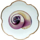 Seascape Shells Dinnerware