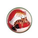 Old St. Nick Cat Bowl 5.5