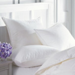 Sierra Down Alternative Pillows | Gracious Style