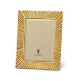 Ray Gold Picture Frame