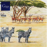 Safari Paper Luncheon Napkins X 20 13 in. X 13 in. Pack Of 12