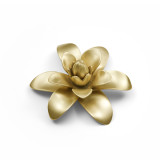 Ginger Blossom w/ Brass Plate Flower w/ Box
