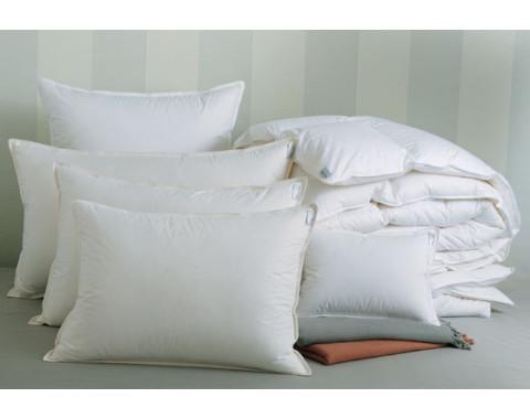 Arcadia Down Alternative Pillows | Gracious Style